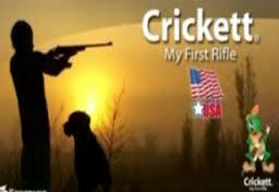 crickett ny first rifle