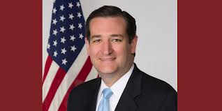 Ted Cruz Offers a REAL Solution… ABOLISH THE IRS