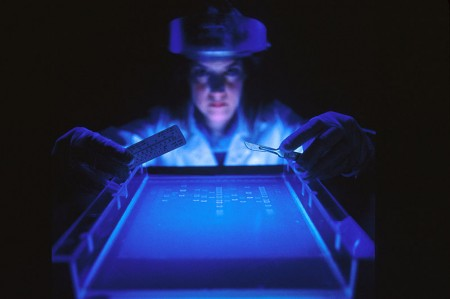 The Coming National DNA Database