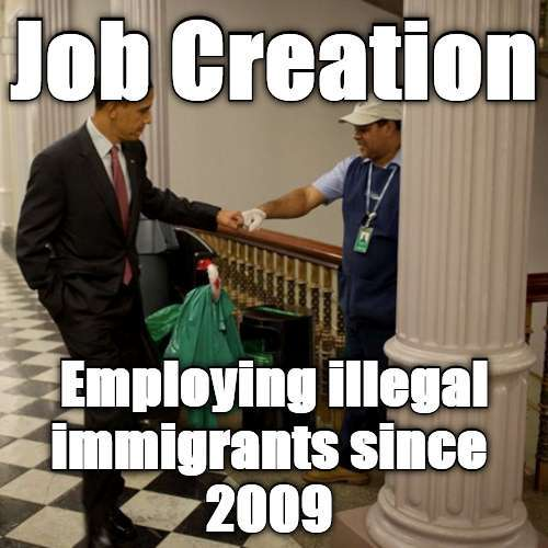 jobs to illegals