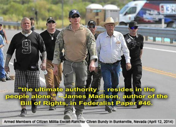 armed militia 2