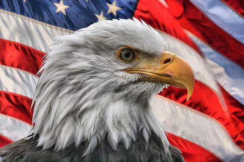 American-Pride.jpg