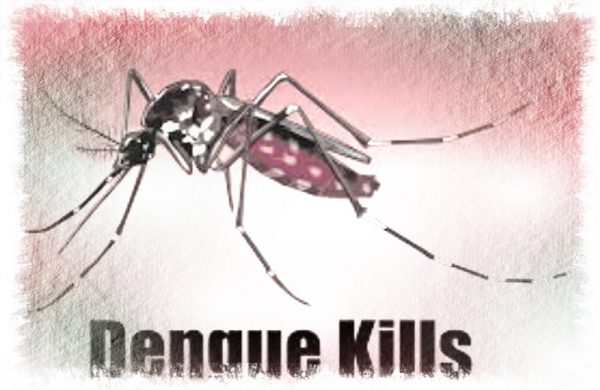 dengue kills