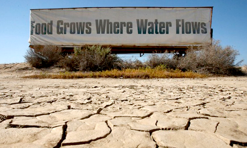 drought california food grows where water flows
