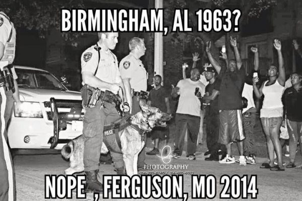 ferguson 2014 The Anti Media