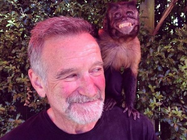robin williams monkey