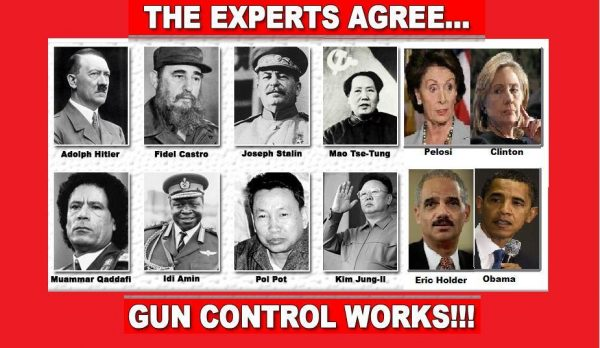 the_experts_agree_gun_control_works