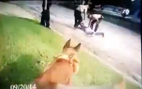 Cop Allows K-9 to Maul Handcuffed, Face Down Suspect, Then Blames it On Him