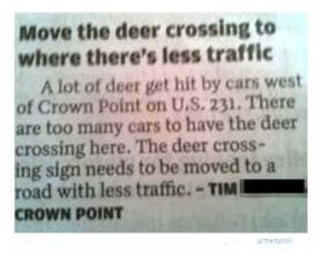 deer crossing 2