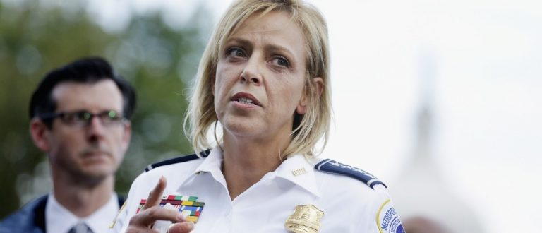 DC Police Chief Blurts Out the Truth about Gun Laws… Priceless