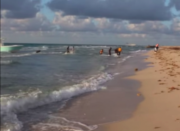 Illegal Aliens Storm Florida Beach – Obama, Rubio and Gang of Eight Silent