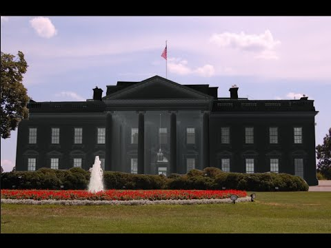 Paint the White House Brown