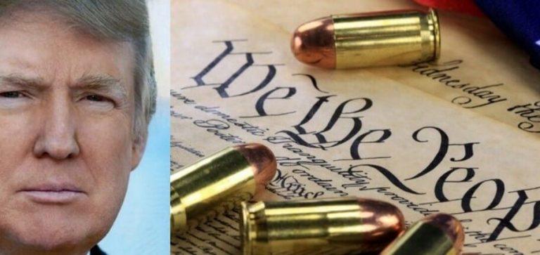 Trump Announces Gun Plan