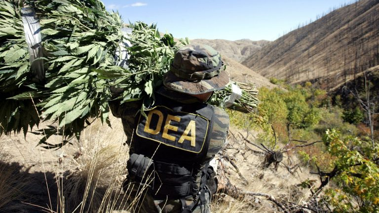The War on Drugs Needs to be Abandoned