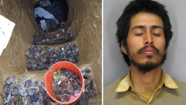 HOMELESS MAN ARRESTED FOR LIVING IN A 15-FOOT-DEEP CAVE HE DUG IN A PARK
