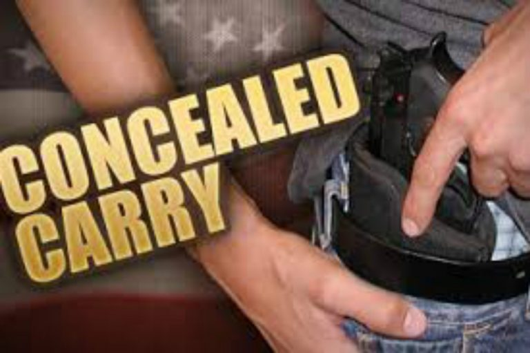Virginia Gun Grabbers Blindsided – Forced to Recognize Concealed Carry Permits from 25 States