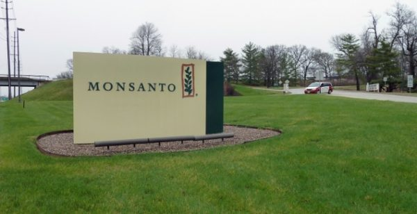 monsanto cuts jobs
