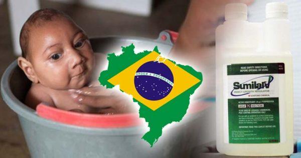 sumilarv-suspended-in-Brazil