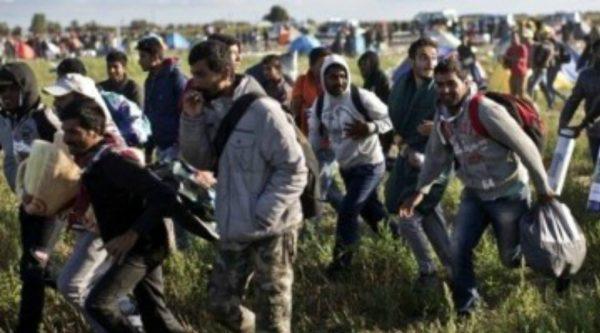 Migrants-walking-Europe