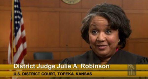 judge julie robinson