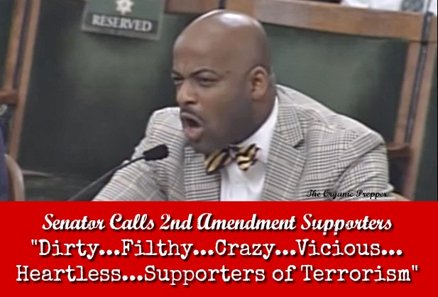 """Senator Calls 2A Supporters """"Dirty…Filthy…Crazy…Vicious…Heartless…Supporters of Terrorism"""""""
