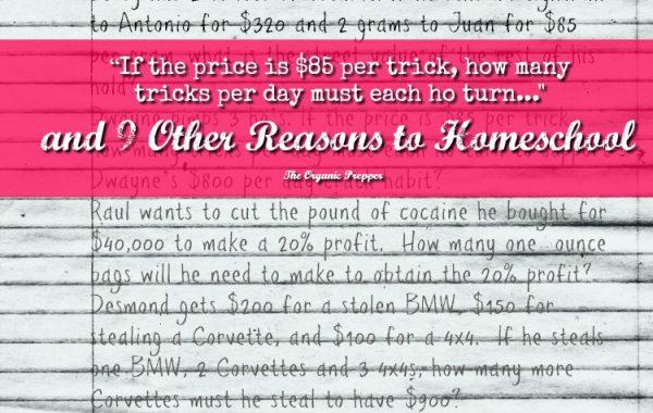 reasons-to-homeschool