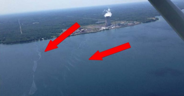 There's No Covering Up This One — Visible Pollution Leaking from NY Nuclear Plant