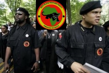 Black-Panthers-450x301