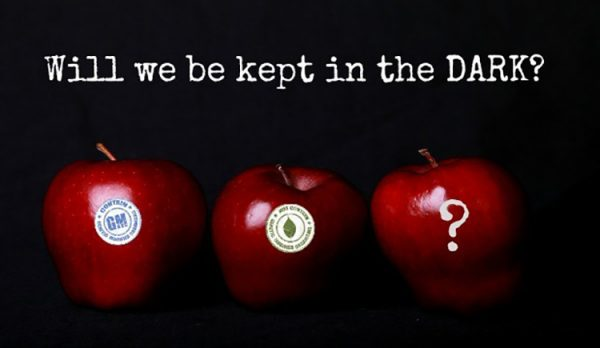 apples-GMO-DARK-Act-620x360-1 (1)