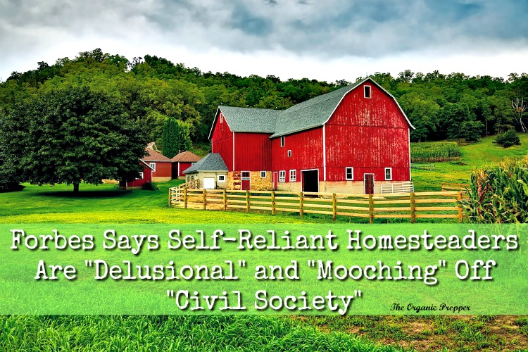 """Forbes Says Self-Reliant Homesteaders Are """"Delusional"""" and """"Mooching"""" Off """"Civil Society"""""""
