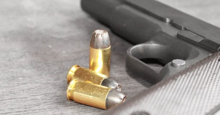 US District Court: Mental Health Treatment Doesn't End Rights Of Gun Owners