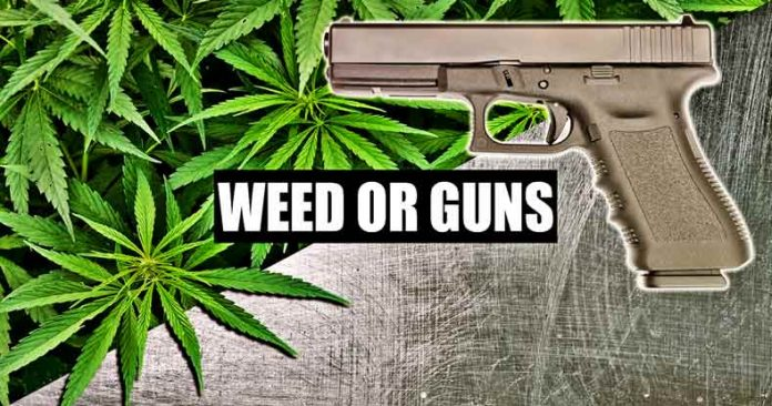 State Police Tell Medical Marijuana Patients to Turn in Their Guns Or Be Arrested
