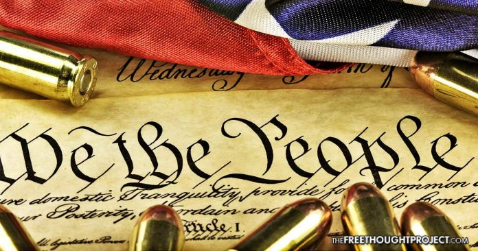 Federal Court Quietly Rules 'Assault Rifles' Not Protected by 2nd Amendment
