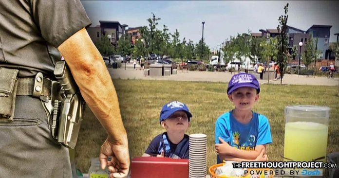 Cops Raid Little Boys' Lemonade Stand, Shut it Down for Not Having a Permit
