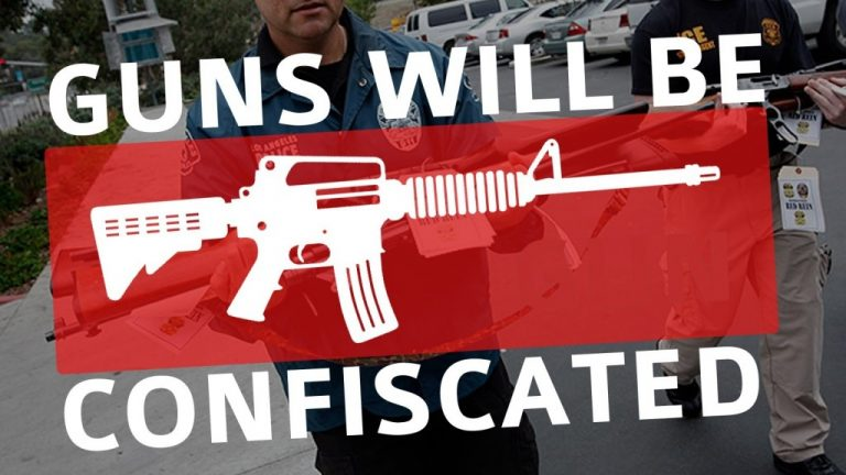 Door to Door Gun Confiscation: No Longer Law Enforcement, Now Agents of the State!-Don't Let it Get This Far America