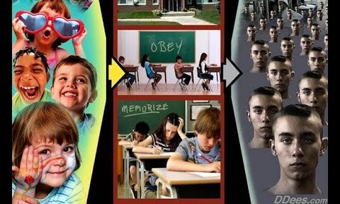 Homeschooling Expands As Parents Seethe Over Liberal Social Engineering And Violence