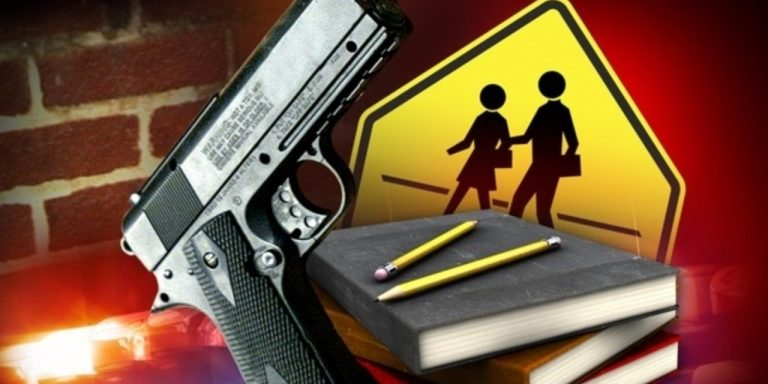 NPR Investigation finds 66% of School Shootings In 2015-16 NEVER HAPPENED!