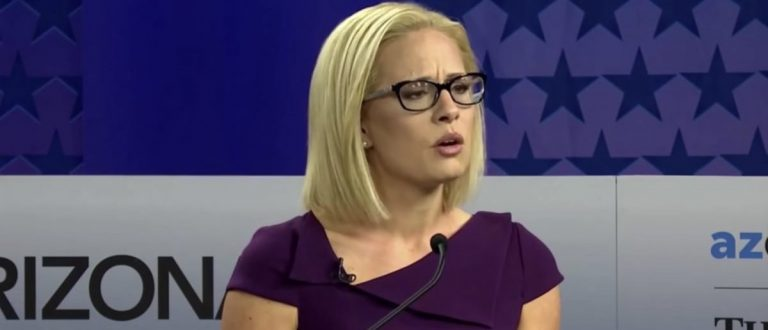 Arizona Senate race: Democrat Kyrsten Sinema calls stay-at-home moms 'leeches'