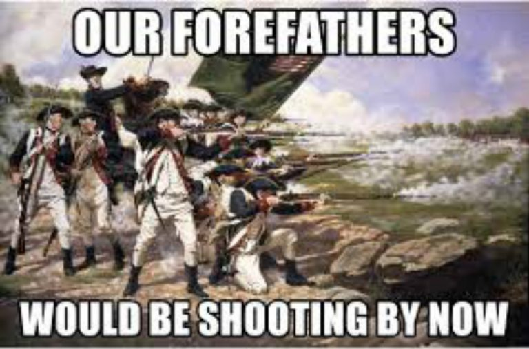 """I think our Forefathers would be shooting by now"""