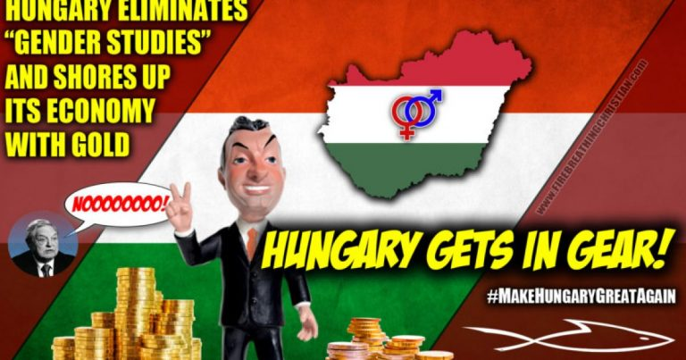 Wanna Make America Great Again? Model Hungary