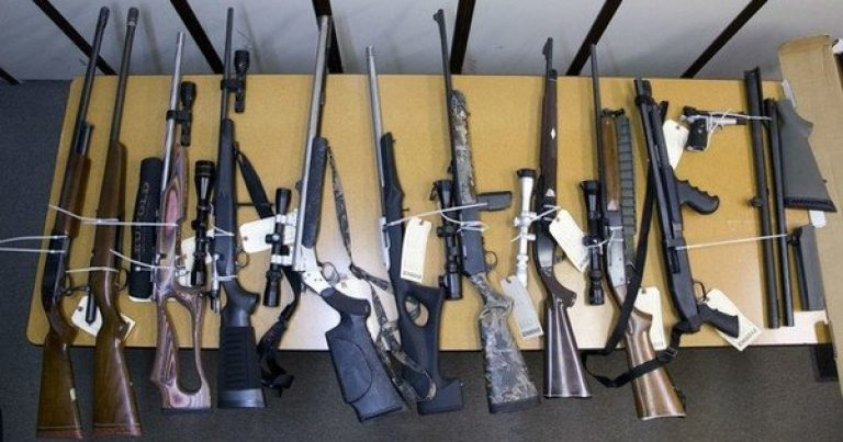 Oregon's New Red Flag Law: State Confiscates Nearly 50 Gun Owners' Guns