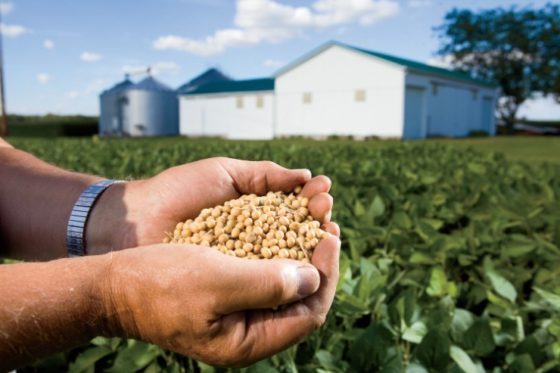 Food Crisis In The Making: Farm Bankruptcies Reach Horrifying Levels