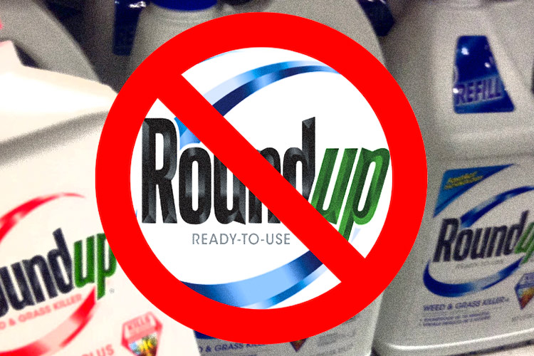 Costco to be the First Major Retailer to Dump Monsanto's Roundup and Glyphosate Herbicide From Its Shelves