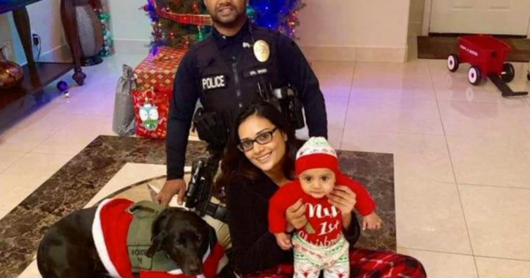Sanctuary State-City: Another Police Officer Murdered by Illegal Immigrant – Law States Governor, Mayor & Legislators Are Legally Responsible!
