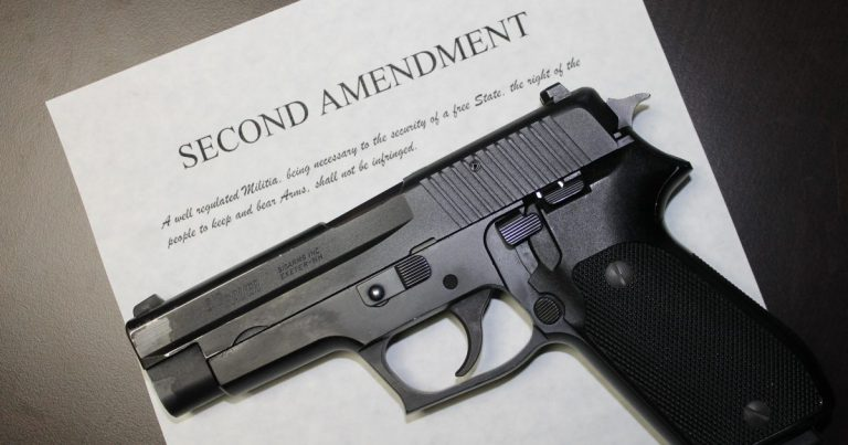 New Mexico: 29 of 33 State Sheriffs Stand Against New Gun Control Laws