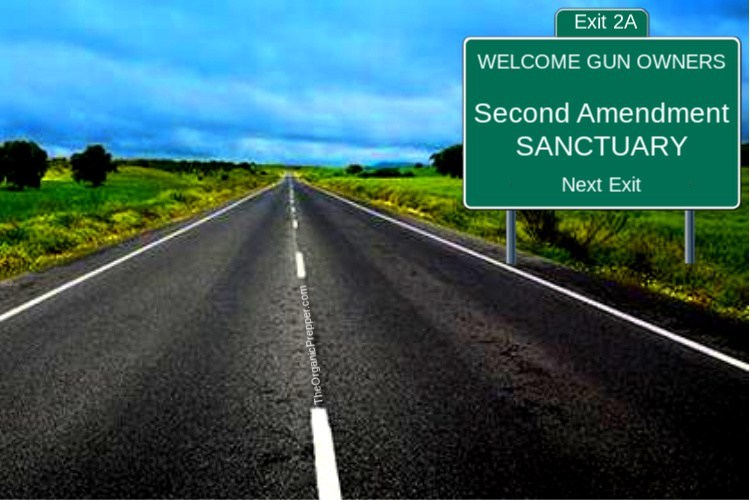 REBELLION: Second Amendment Sanctuary Cities, Counties, and STATES Spring Up Across the Country