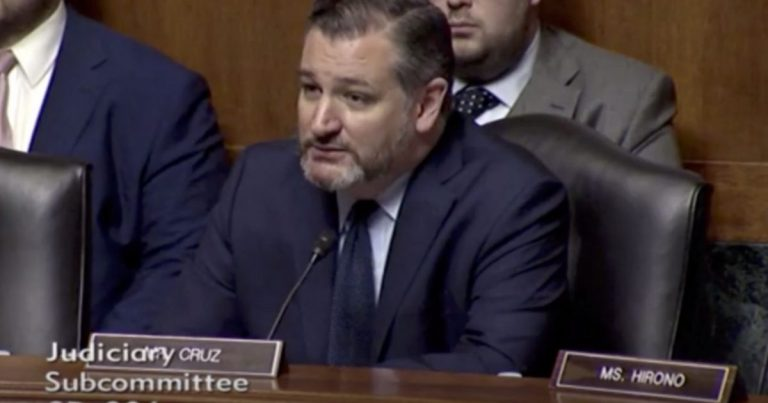 Senator Ted Cruz proposes SOLUTIONS to big tech's conservative censorship