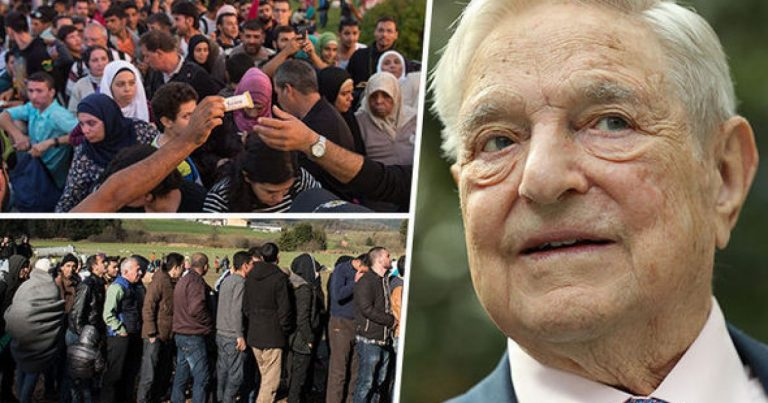 UN Fingerprints & Soros Funded NGO's BEHIND Illegal Invasion of America: The Whistleblower. The Proofs.