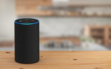 NEVER Bring An Amazon Alexa Into Your Home