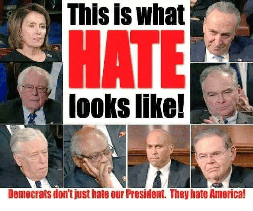 Democrats and Their Sympathizers HATE America: Here's Why